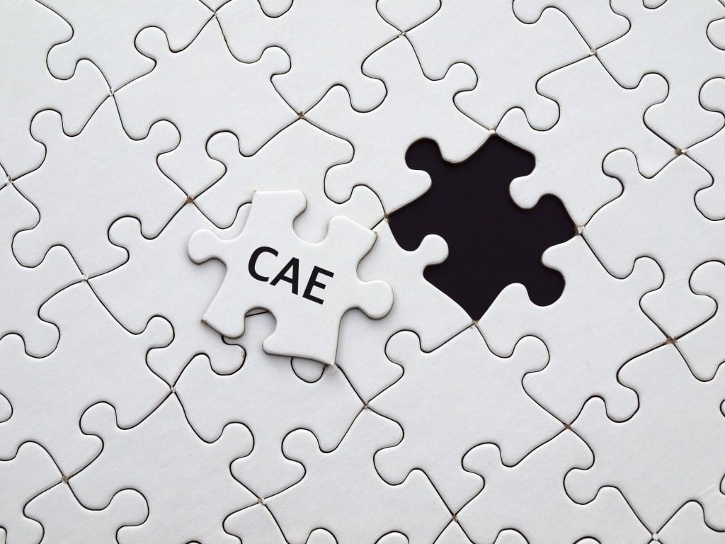 puzzle-CAE